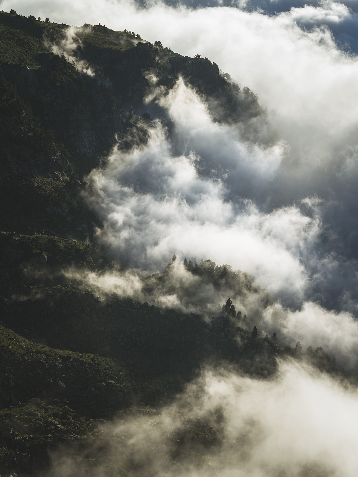 brume dans la montagne