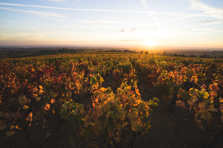 lever de soleil beaujolais